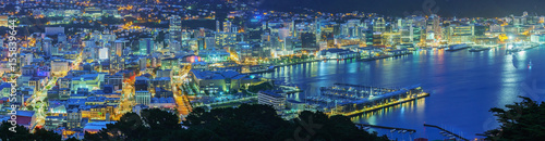 Foto op Plexiglas Oceanië Panoramic beautiful scenery from Mount Victoria lookout at night in Wellington , capital of New Zealand , North Island of New Zealand
