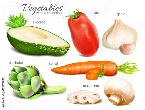 Fototapety, obrazy: Vegetables. Collection of illustrations. Vector illustration.