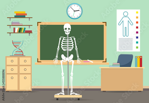 Anatomy Classroom Interior Vector Illustration Empty Class Room