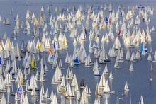 Barcolana, The Historic Sailing Regatta In Trieste, Italy