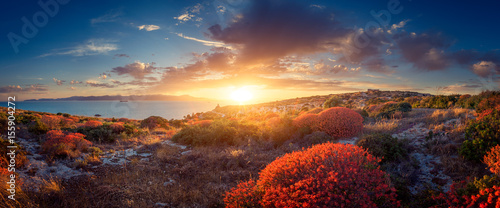 Fotobehang Chocoladebruin Panoramic view of sunset on the Mediterranean vegetation