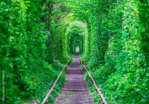 Recess Fitting Green The guy with the girl gudlyayut railroad tunnel of love spring forest