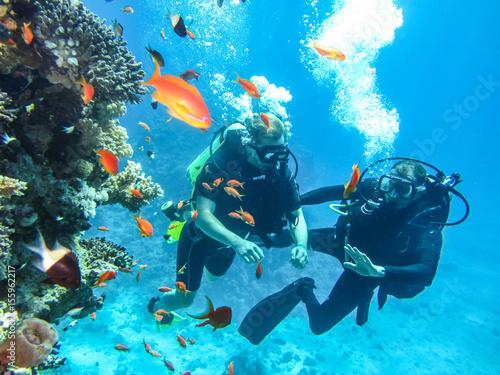 Stickers pour portes Plongée Дайверы под водой. Погружение с аквалангом