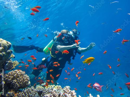 Fotografie, Obraz Команда дайверов под водой. Активный отдых в Египте