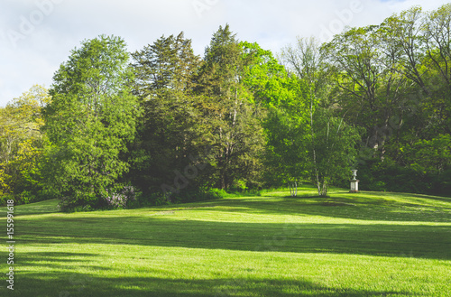 Deurstickers Golf Green field with tress, nature concept