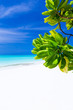 Maldives island, perfect getaway