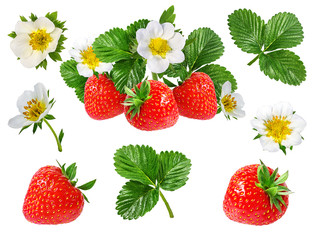 Panel Szklany Owoce strawberry and strawberry flower isolated on white