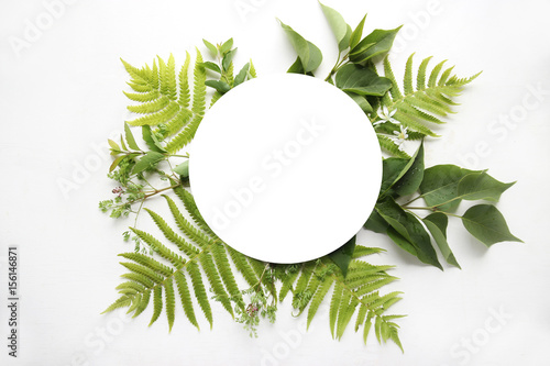 Top view of the green fern leaves