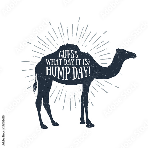 Leinwand Poster Hand drawn label with textured camel vector illustration and Guess what day it is? Hump day! funny lettering