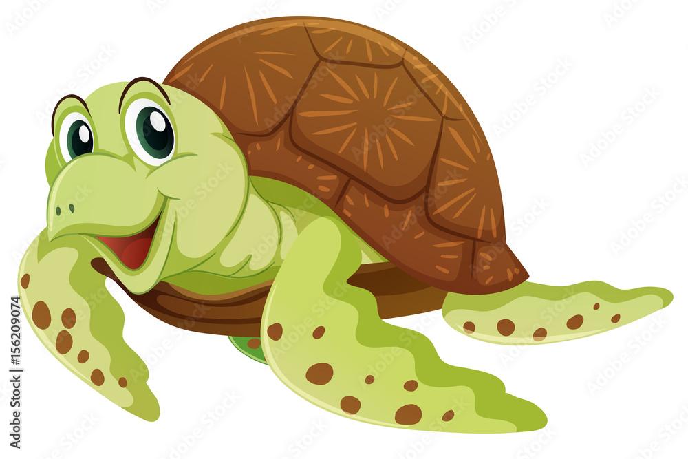 Gamesageddon Stock Sea Turtle With Happy Face