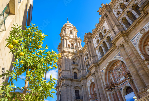 Cathedral of Malaga. Andalusia, Spain Canvas Print