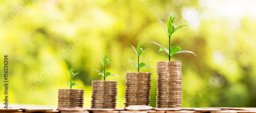 Fotografie, Obraz  Money Business success growing concept, Trees  on pile of coins money over sun flare silhouette tone