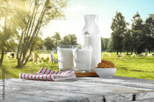 Fotografia, Obraz  milk and cows