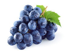Wet Dark Blue Grape With Leaves Isolated On White Background. Wet Fruit. With Clipping Path. Full Depth Of Field.