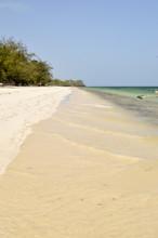 Bamburi Beach With A Ditch Near