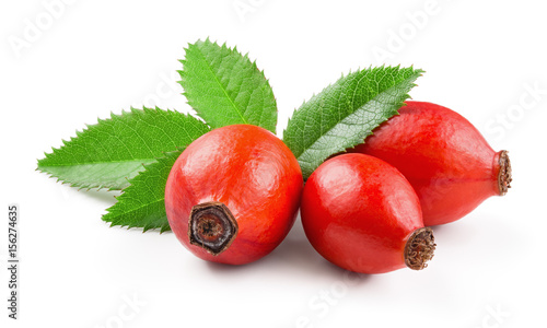 Rosehip isolated on a white background. Fresh raw briar berries with leaves.
