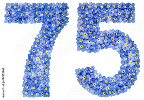 Arabic numeral 75, seventy five, from blue forget-me-not flowers Poster