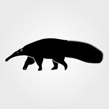 Anteater Icon Isolated On White Background.