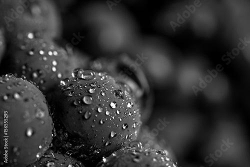 Türaufkleber Makrofotografie Close-up, berries of dark bunch of grape in low light isolated on black background