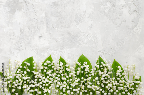 Photo Stands Lily of the valley Lilies of the valley on a concrete texture, lying in a row
