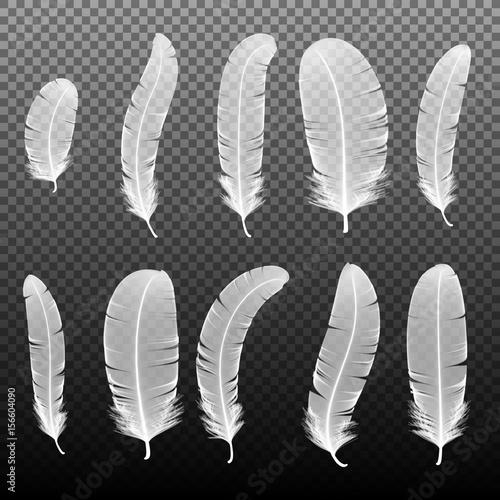 Zestaw różnych białych piór ptaków na czarnym tle. Kolekci 3d realistyczna stylowa miękka puszysta makro- łabędzia wektorowa ilustracja. Pióro do pisania odręcznego