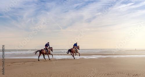Deurstickers Paardrijden grand galop sur la plage à l'aube