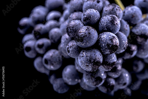 Close-up, berries of dark bunch of grape  in low light isolated on black backgro Wallpaper Mural