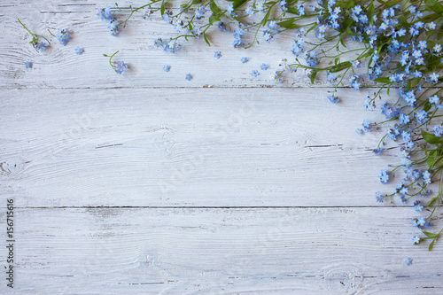 Valokuvatapetti Forget-me-not on a wooden background