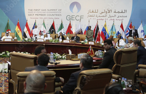 A general view of the opening session of the first Gas