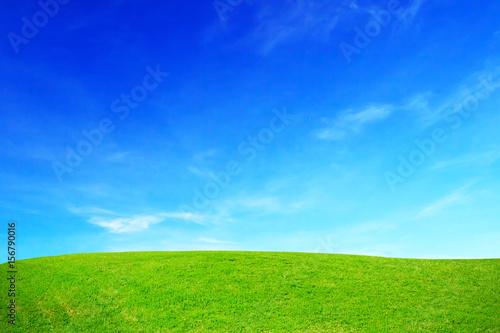 Foto op Aluminium Heuvel Green grass hills and blue sky.