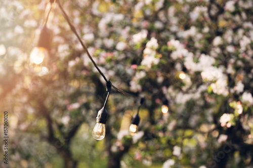 Outdoor party string lights hanging in backyard garden buy this outdoor party string lights hanging in backyard garden aloadofball Gallery