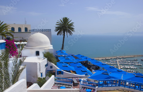 Tuinposter Tunesië Beautiful scenery in the town of Sidi Bou Said