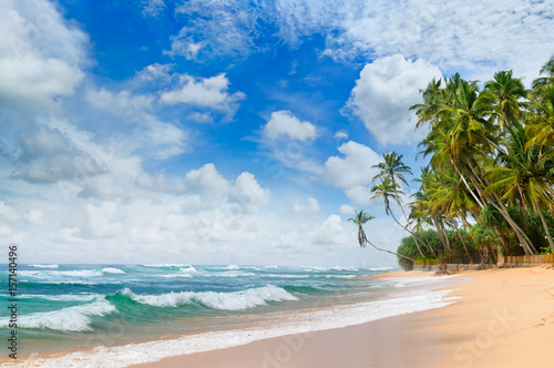 Beautiful ocean and tropical palm trees on the beach