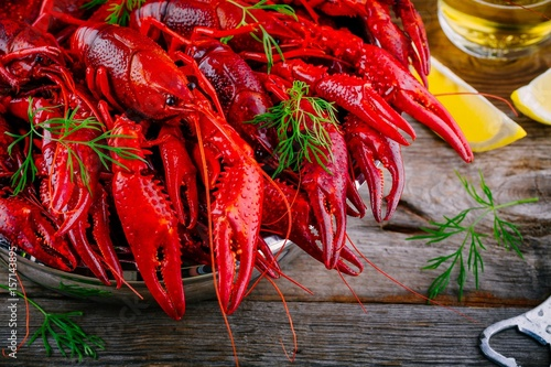 Boiled crayfish with dill Fototapet