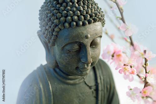 Fotografija  Buddha's head with blossom cherry branches