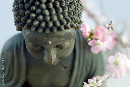 Buddha's head with blossom cherry branches Fototapeta