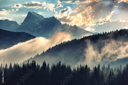Foto op Plexiglas Bergen Foggy morning landscape with mountain range and fir forest in hipster vintage retro style