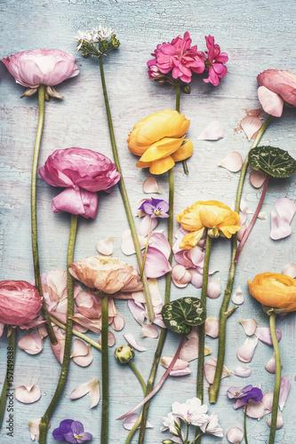 kolorowe-kwiaty-na-turkusowym-tle