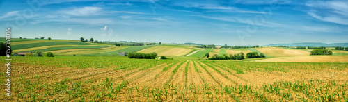 Stickers pour porte Bleu Panorama of Alsace rolling landscape with lines of sprouts. France