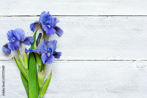 blue iris flowers over white wooden background
