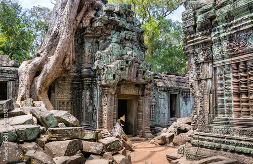 Tree roots over the beautiful Ta Prohm temple at Angkor, Siem Reap Province, Cambodia Wallpaper Mural
