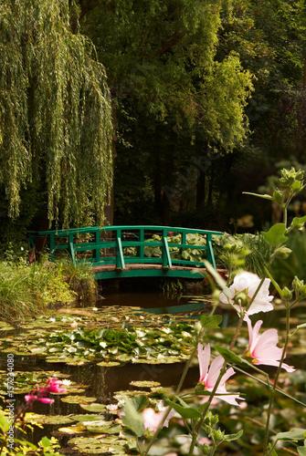 Foto  Monet's lilies