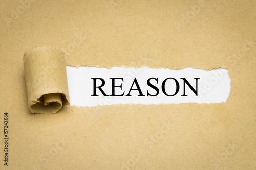 Cuadros en Lienzo  Reason