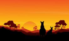 Silhouette Of Kangaroo St Sunset Scenery