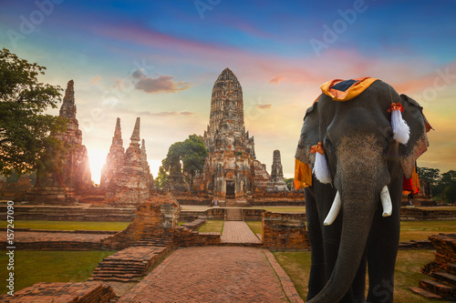 Wall Murals Place of worship Elephant at Wat Chaiwatthanaram temple in Ayuthaya Historical Park, a UNESCO world heritage site in Thailand