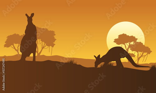 Garden Poster Brown On the hill kangaroo scenery silhouettes