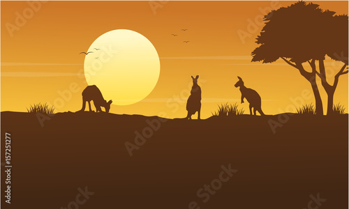 Garden Poster Brown Kangaroo scenery on park silhouettes