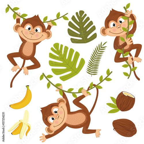 Naklejka premium zestaw na białym tle małpa z roślinami i owocami - ilustracja wektorowa eps