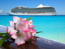 Pink Alstroemeria Flower On Wood. Cruise Ship In Background. Summer, Romantic And Luxury Vacation Concept.