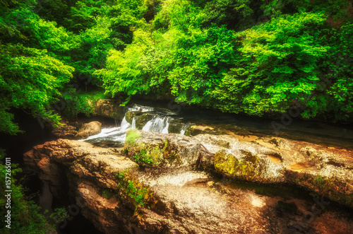 Spoed Foto op Canvas Reflectie Martvili canyon in Georgia. Beautiful natural canyon with mountain river